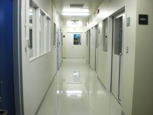 GMP棟1階 原薬原料製造エリア