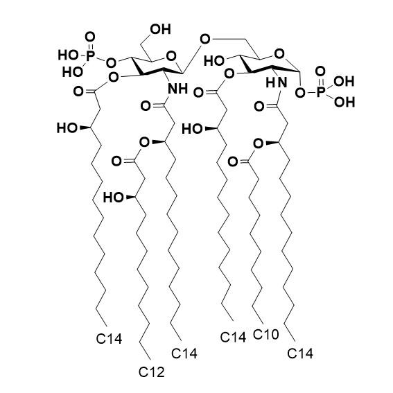 Lipid A (Alcaligenes faecalis)